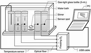 Schematic Diagram Of The Water Bath Incubator And Closed