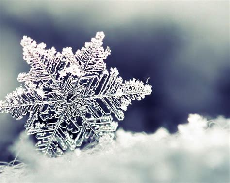 Wallpaper Background Snowflake Desktop Backgrounds Wallpaper Cave