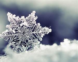 Snowflake Desktop Wallpapers - Wallpaper Cave