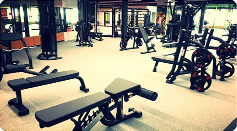 salle musculation nazaire fight ness