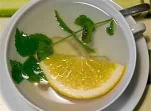 Gut Gegen Erkältung : gut gegen erk ltung fressen und gefressen werden ~ Whattoseeinmadrid.com Haus und Dekorationen