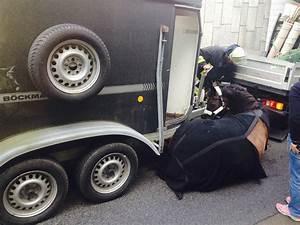 FW-E: Pferd verletzt sich bei Sturz aus fahrendem Anhänger ...