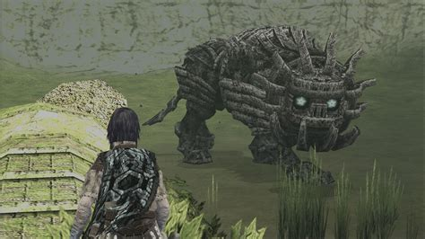 Shadow Of The Colossus Movie Gets New Director The Mary Sue