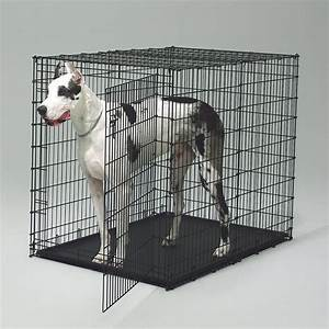 Midwest 1154u extra large dog crate black coated wire for for Giant breed dog kennel