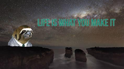 wallpaper  sloths   meme