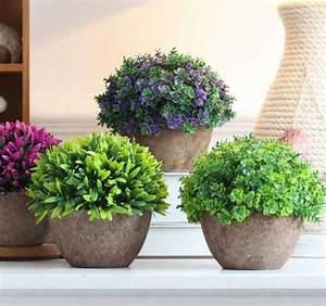 Plante Pot Exterieur Terrasse