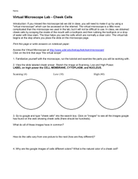 Printables Microscope Lab Worksheet Ronleyba Worksheets Printables