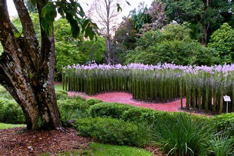 les jardins botaniques singapour