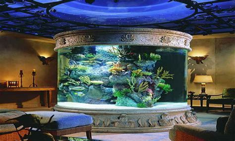 Home decoration accessories, fish tank decor ideas