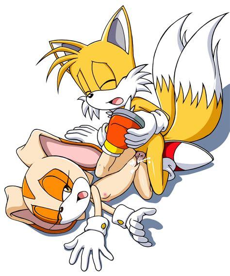Rule 34 Anthro Cream The Rabbit Cum Female Fox Fur Furry