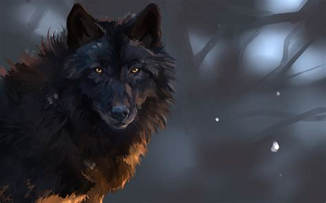 black wolf wallpapers images photos pictures backgrounds