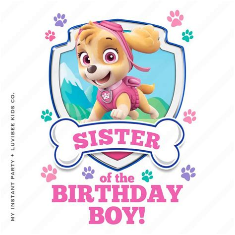 skye paw patrol sister   birthday boy design