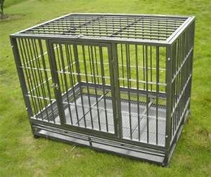 escape proof dog crate