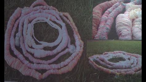 Sācies 5. Starptautiskais tekstilmākslas un šķiedras ...