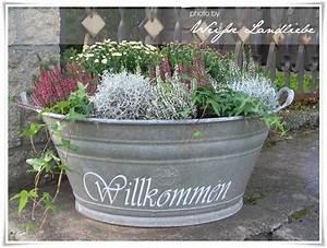 Blumenkübel Bepflanzen Vorschläge : t r idee garten pinterest zinkwanne ich glaube und glaube ~ Whattoseeinmadrid.com Haus und Dekorationen