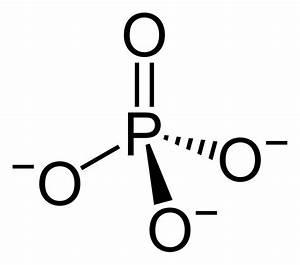 Simple Phosphate Diagram