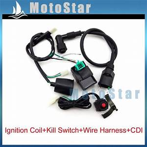 Wiring Loom Harness   Kill Switch   Ignition Coil   Ac Cdi