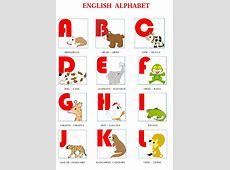 English Alphabet Related Keywords English Alphabet Long
