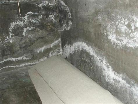 What Is Basement Efflorescence? Everdry