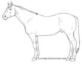 quarter horse coloring page  printable coloring pages