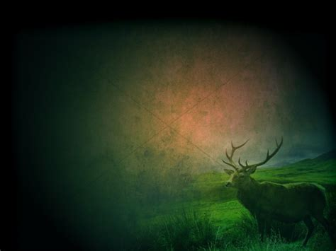 deer worship background worship backgrounds