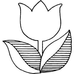 tulip template tulip flower coloring sheet