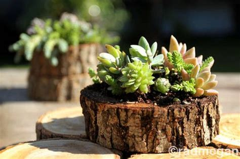 tree stump planters how to recycle tree stumps for garden and yard decorations