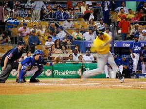 Winter Baseball | Punta Cana Tours and Excursions