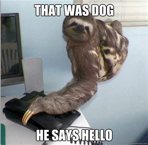 30 Funny Animal Captions (30 Pics)  Amazing Creatures