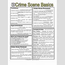 Crimescene Basics Worksheet 1  Crime Scene