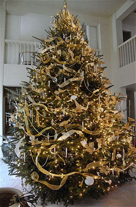 12 foot majestic christmas tree dan and bryan s trees formerly sundback trees serving washington d c chevy