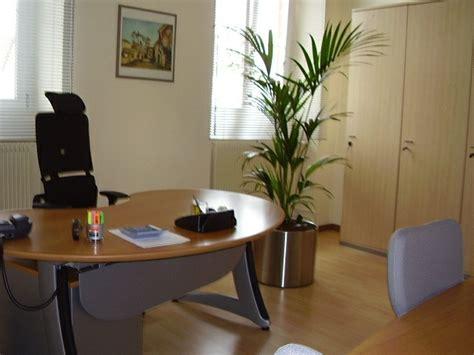 le bureau verte aménagement de plantes d 39 intérieur pour le bureau de travail