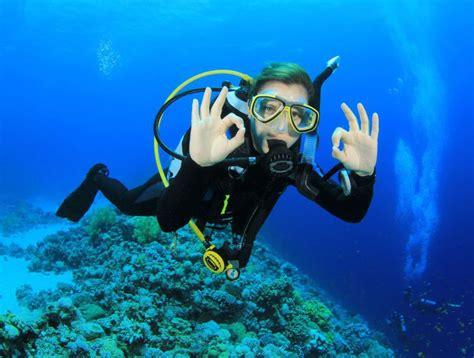 le de plongee sous marine plong 233 e sous marine 224 la recherche de nemo biba