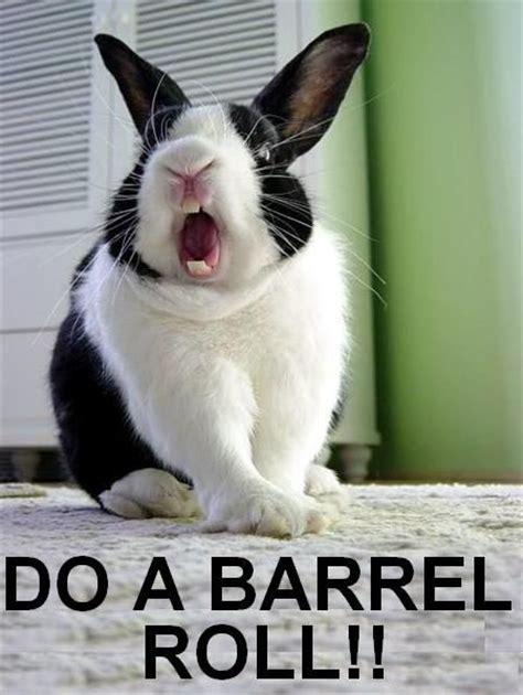 Do A Barrel Roll Meme - image 381 do a barrel roll know your meme