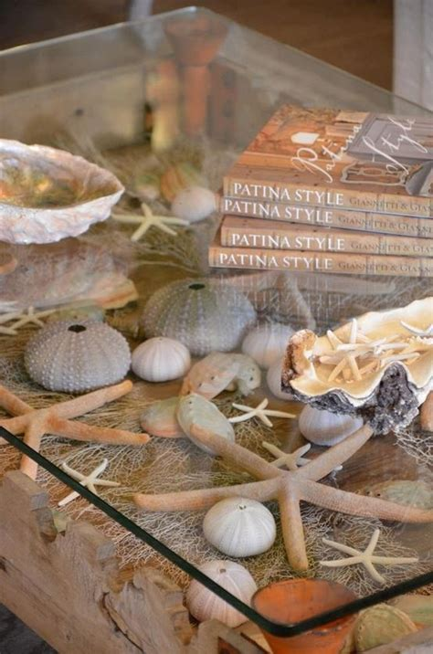 how to display shells ideas 17 best images about sea shell display ideas on pinterest sea shells bookends and printer types