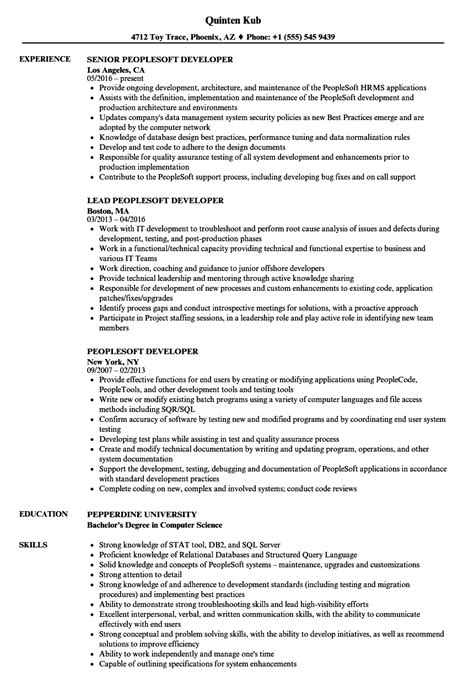 Resume Peoplesoft by Peoplesoft Developer Resume Sles Velvet