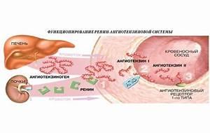 Артериальная гипертензия клиника лечение