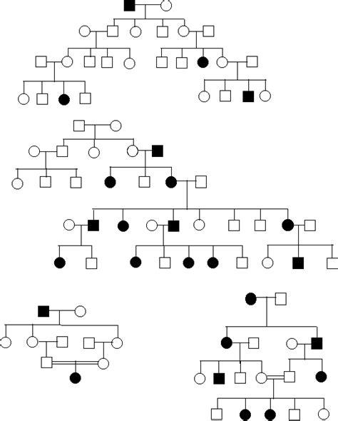 all worksheets 187 pedigree worksheets printable