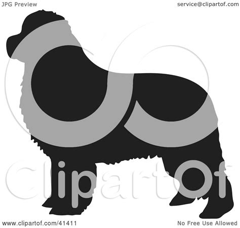 clipart illustration   black silhouetted newfoundland