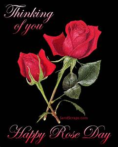 ᐅ Top Rose Day images, greetings and pictures for WhatsApp