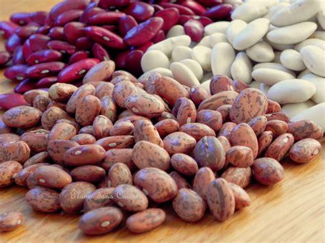 comment cuisiner les haricots blancs cuisson rapide des haricots secs envie de cuisiner