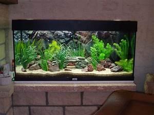 Idee Decoration Aquarium : id e d coration aquarium eau douce ~ Melissatoandfro.com Idées de Décoration