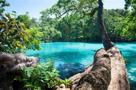 10 Tourist Attractions In Jamaica