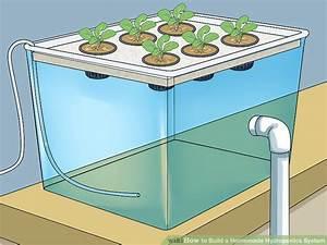 How To Set Up Hydroponics