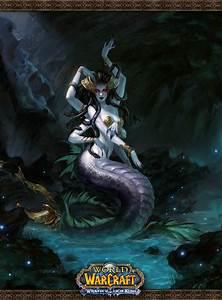 Lady Vashj World Of Warcraft Fan Art 26202701 Fanpop