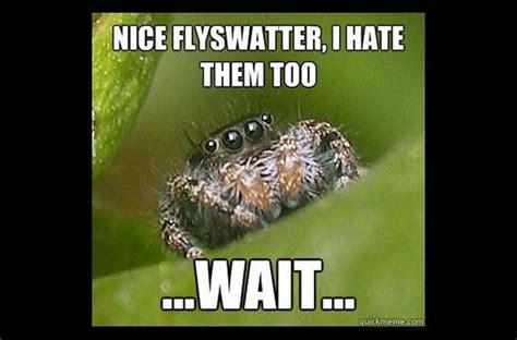 Misunderstood Girlfriend Meme - misunderstood spider meme fun