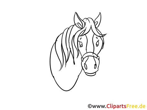 pferdekopf zeichnung