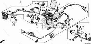 Honda Motorcycle 2010 Oem Parts Diagram For Wire Harness