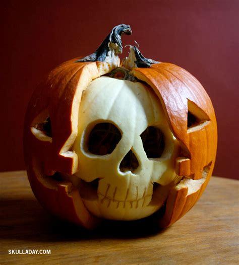 bonus 382 pumpkin anatomy skull