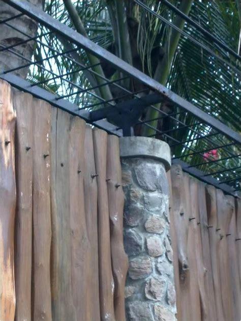 memperindah pagar dinding pergola tanaman rambat